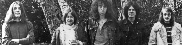 FAIRPORT CONVENTION - Ten years of creative resistance