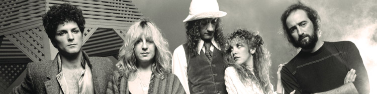 FLEETWOOD MAC - the way out of success