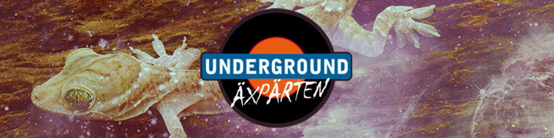 Underground Tips May 2016