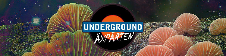 Underground Trips Mai 2018